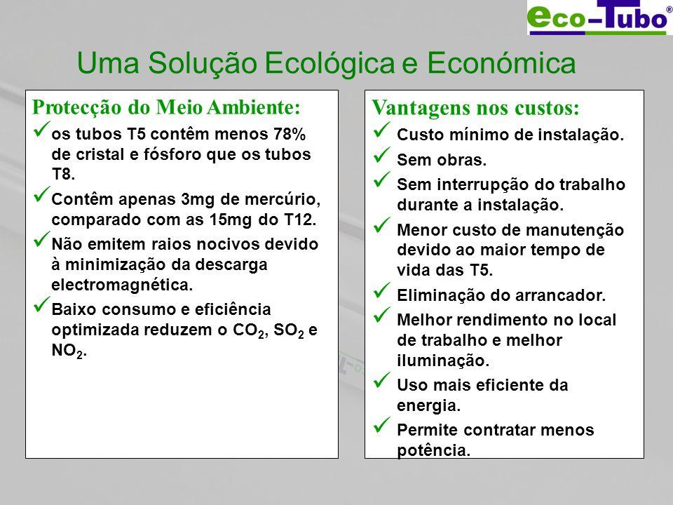 Uma Solução Ecológica e Económica