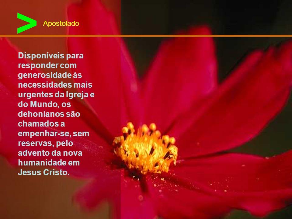 > Apostolado.