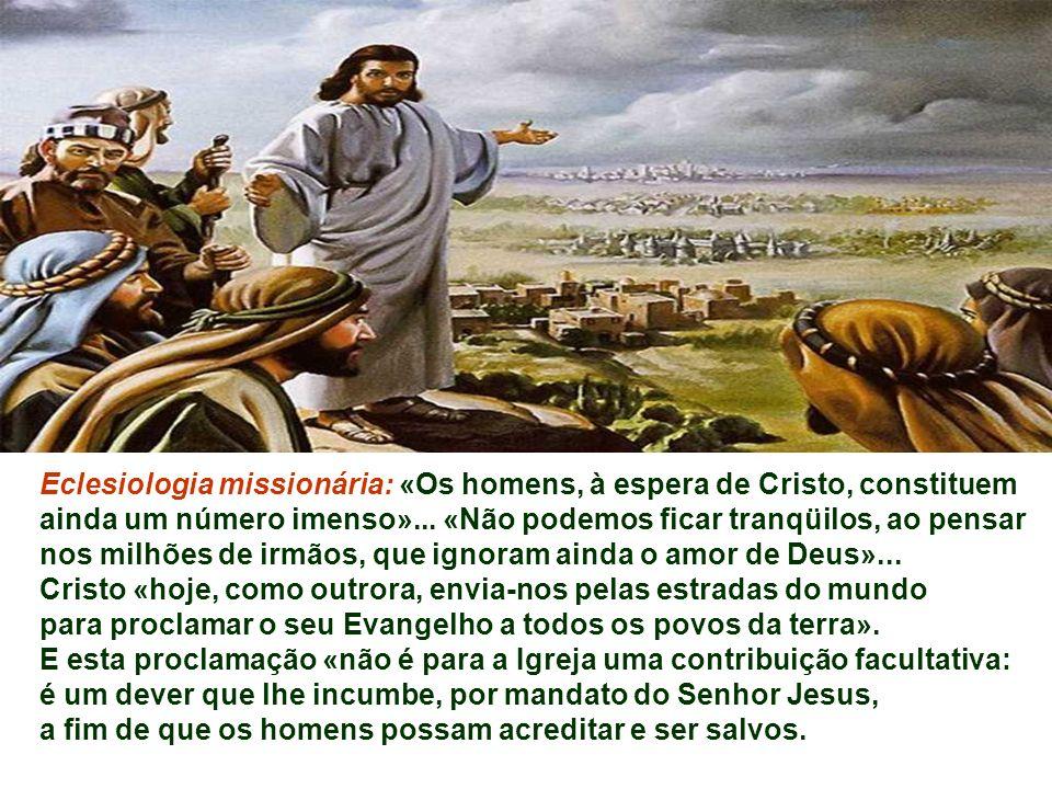 Eclesiologia missionária: «Os homens, à espera de Cristo, constituem ainda um número imenso»... «Não podemos ficar tranqüilos, ao pensar nos milhões de irmãos, que ignoram ainda o amor de Deus»...