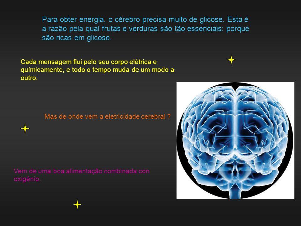 Para obter energia, o cérebro precisa muito de glicose