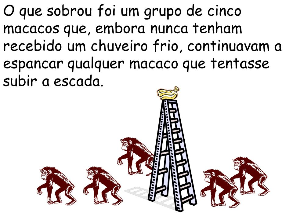 O que sobrou foi um grupo de cinco macacos que, embora nunca tenham recebido um chuveiro frio, continuavam a espancar qualquer macaco que tentasse subir a escada.