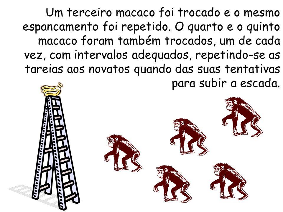 Um terceiro macaco foi trocado e o mesmo espancamento foi repetido