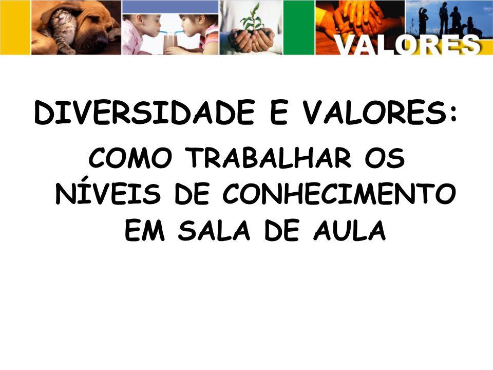 DIVERSIDADE E VALORES: