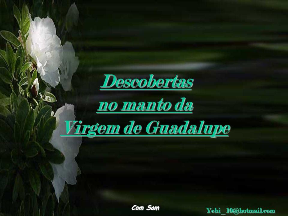 no manto da Virgem de Guadalupe Descobertas Yebi_10@hotmail.com