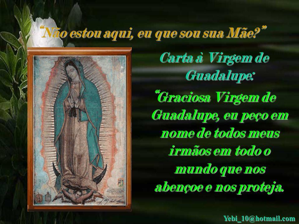 Não estou aqui, eu que sou sua Mãe Carta à Virgem de Guadalupe: