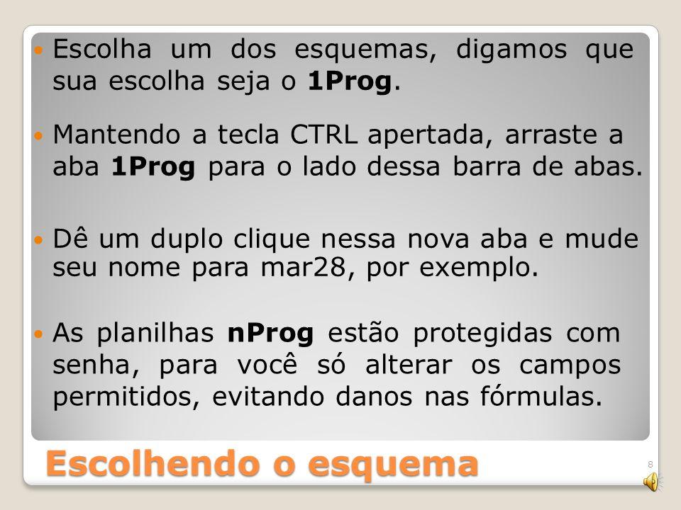 Escolha um dos esquemas, digamos que sua escolha seja o 1Prog.