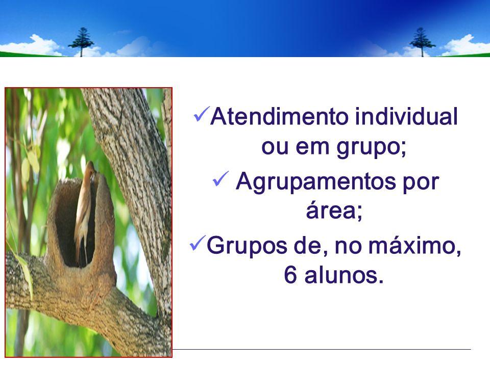 Atendimento individual ou em grupo; Agrupamentos por área;