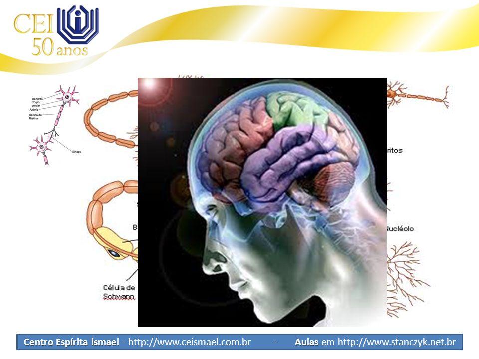 Tipos de Células Neurônios Celulas Tronco