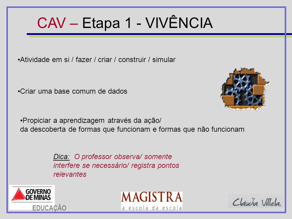 CAV – Etapa 1 - VIVÊNCIA Atividade em si / fazer / criar / construir / simular. Criar uma base comum de dados.