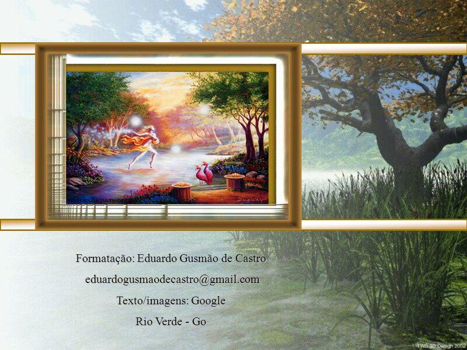 Formatação: Eduardo Gusmão de Castro eduardogusmaodecastro@gmail.com