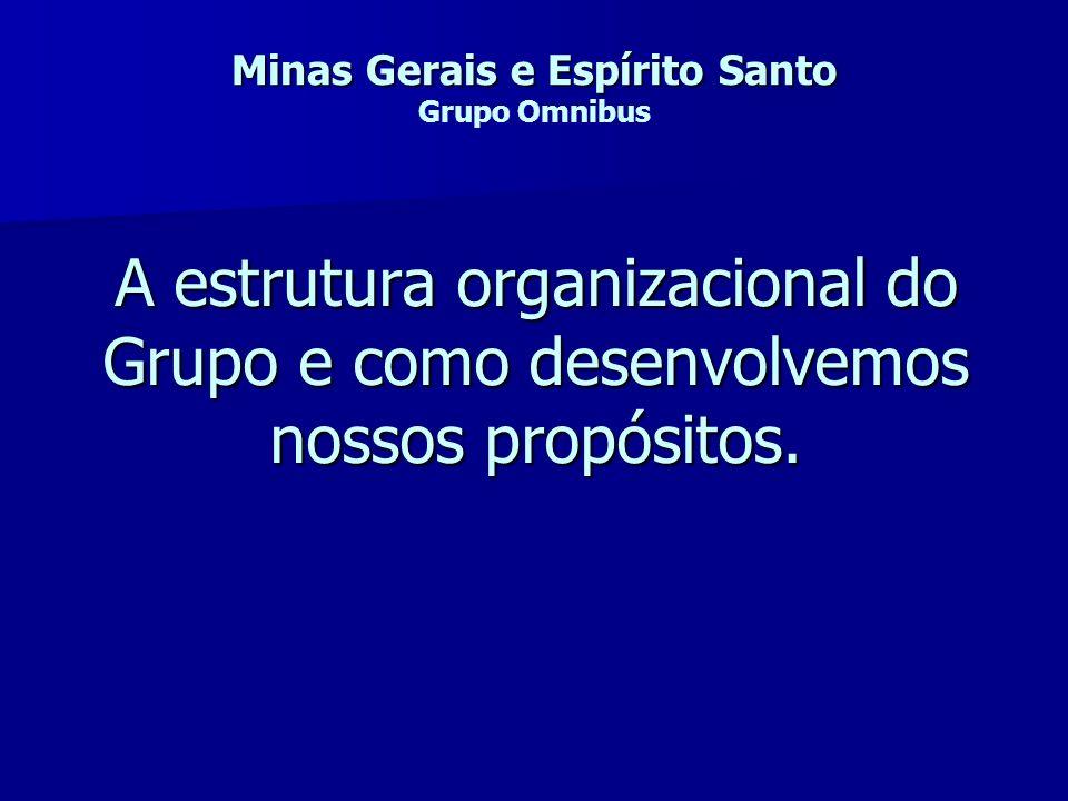 Minas Gerais e Espírito Santo Grupo Omnibus