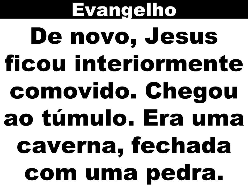 Evangelho De novo, Jesus ficou interiormente comovido. Chegou ao túmulo. Era uma caverna, fechada com uma pedra.