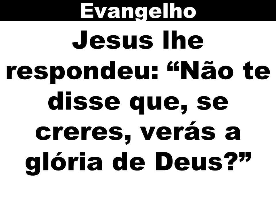 Evangelho Jesus lhe respondeu: Não te disse que, se creres, verás a glória de Deus 105
