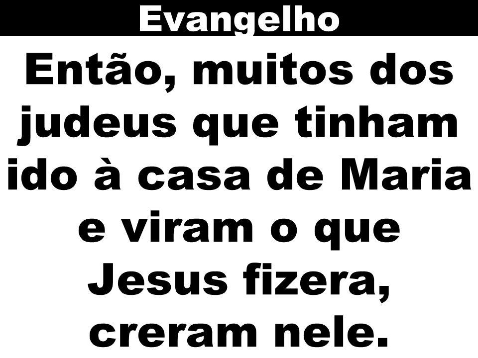 Evangelho Então, muitos dos judeus que tinham ido à casa de Maria e viram o que Jesus fizera, creram nele.