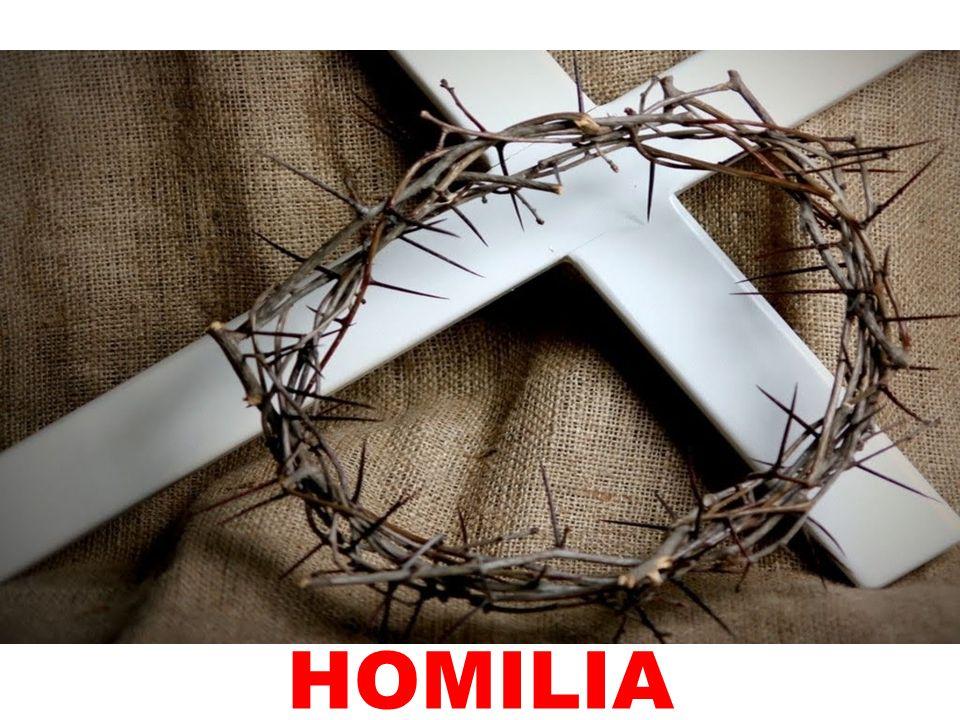 HOMILIA 115