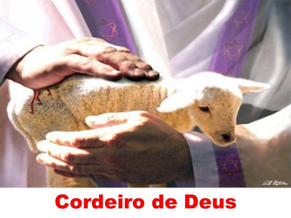 Cordeiro de Deus 205