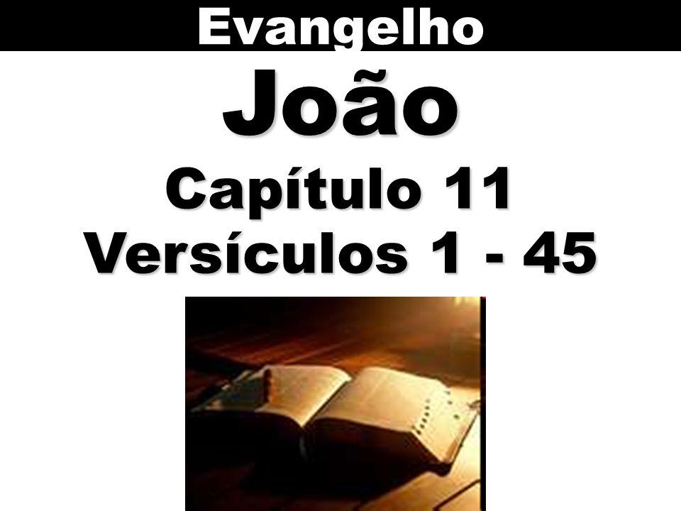 Evangelho João Capítulo 11 Versículos 1 - 45