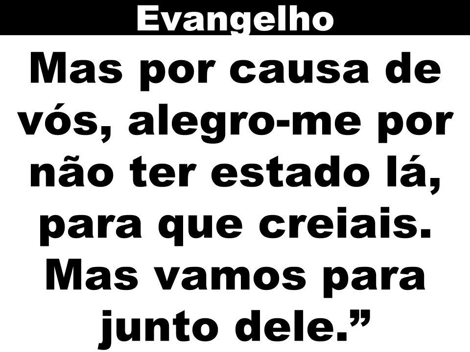 Evangelho Mas por causa de vós, alegro-me por não ter estado lá, para que creiais. Mas vamos para junto dele.