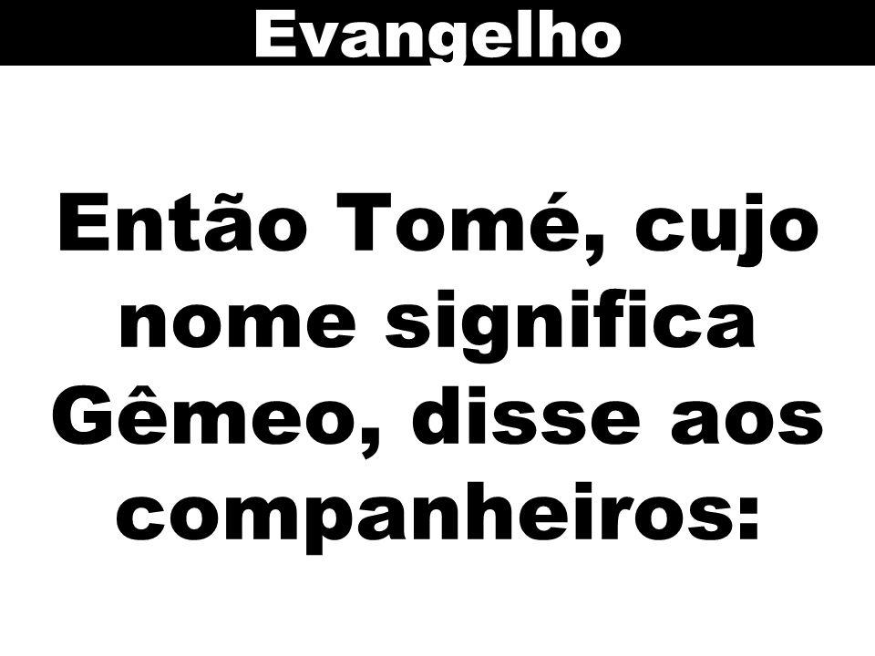 Então Tomé, cujo nome significa Gêmeo, disse aos companheiros: