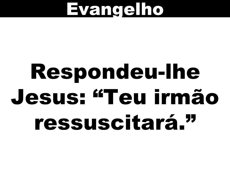 Respondeu-lhe Jesus: Teu irmão ressuscitará.