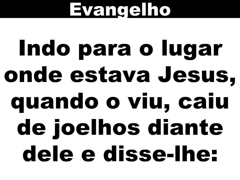 Evangelho Indo para o lugar onde estava Jesus, quando o viu, caiu de joelhos diante dele e disse-lhe: