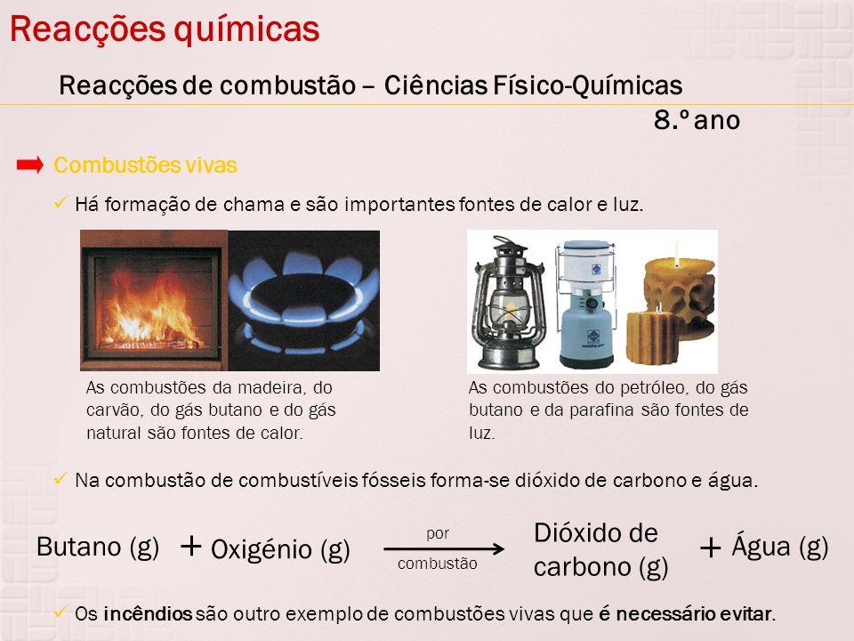 Reacções químicas Reacções de combustão – Ciências Físico-Químicas 8.º ano. Combustões vivas.