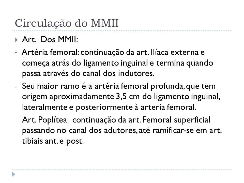 Circulação do MMII Art. Dos MMII: