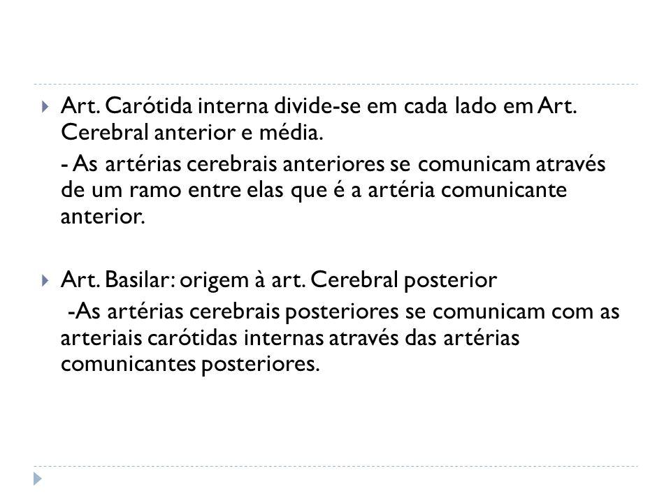 Art. Carótida interna divide-se em cada lado em Art