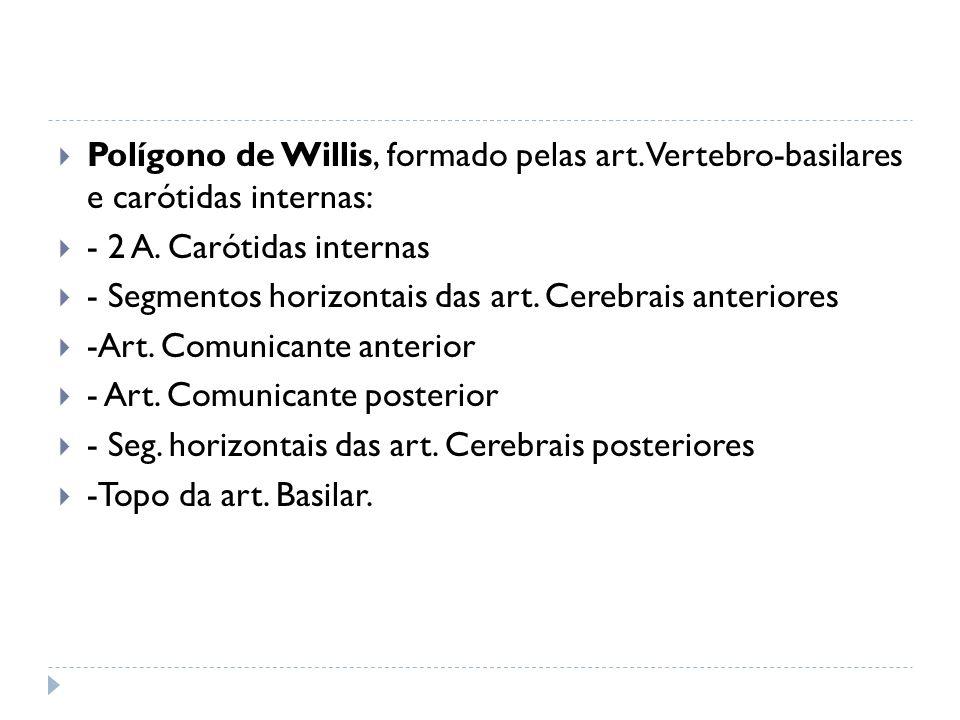 Polígono de Willis, formado pelas art