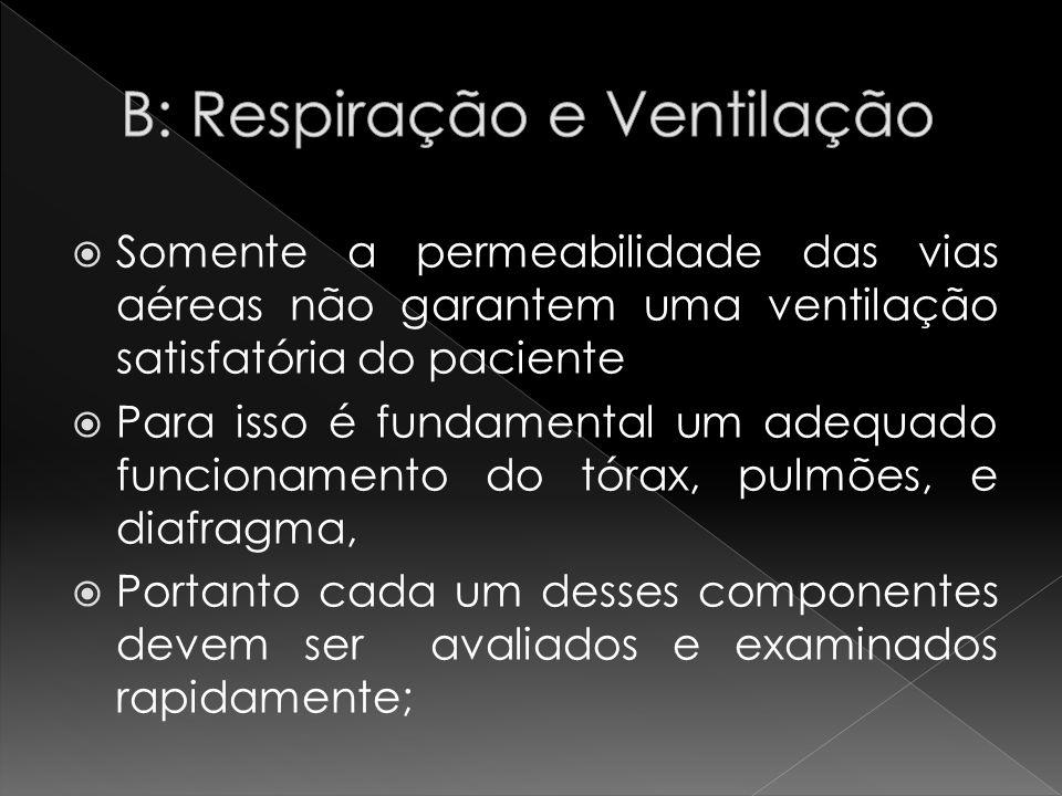 B: Respiração e Ventilação