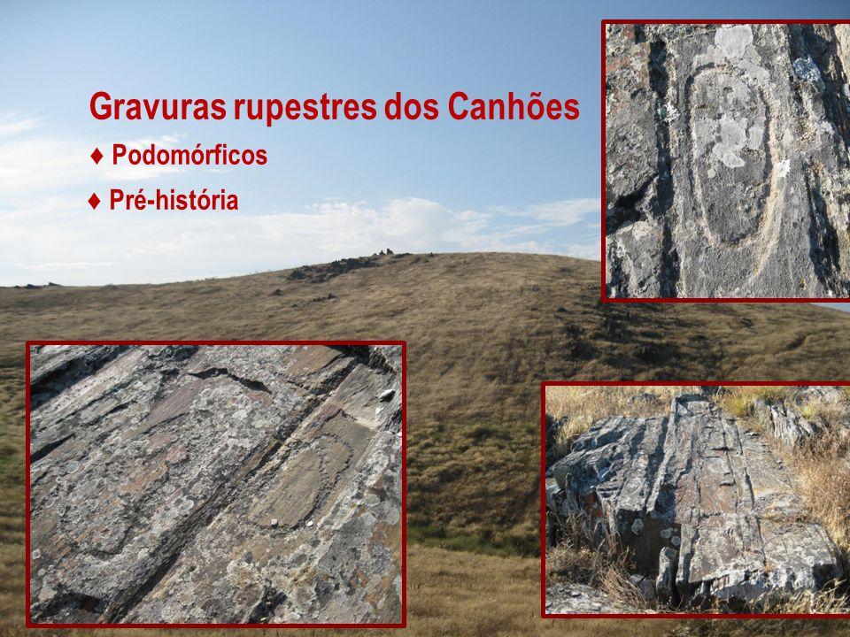 Gravuras rupestres dos Canhões