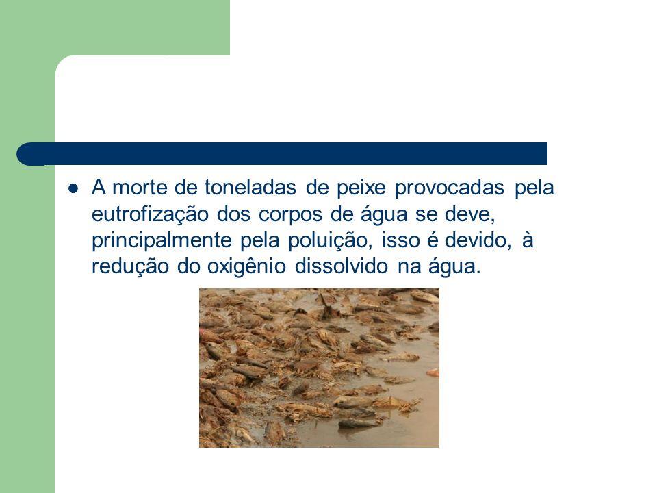 A morte de toneladas de peixe provocadas pela eutrofização dos corpos de água se deve, principalmente pela poluição, isso é devido, à redução do oxigênio dissolvido na água.