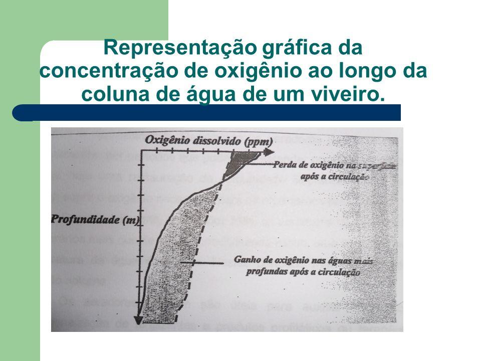 Representação gráfica da concentração de oxigênio ao longo da coluna de água de um viveiro.