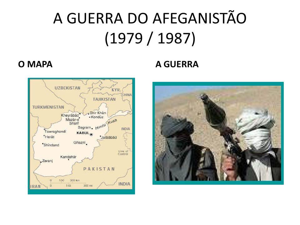 A GUERRA DO AFEGANISTÃO (1979 / 1987)