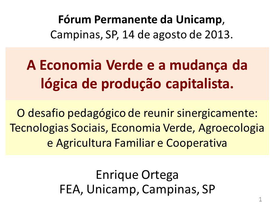 Fórum Permanente da Unicamp, Campinas, SP, 14 de agosto de 2013.