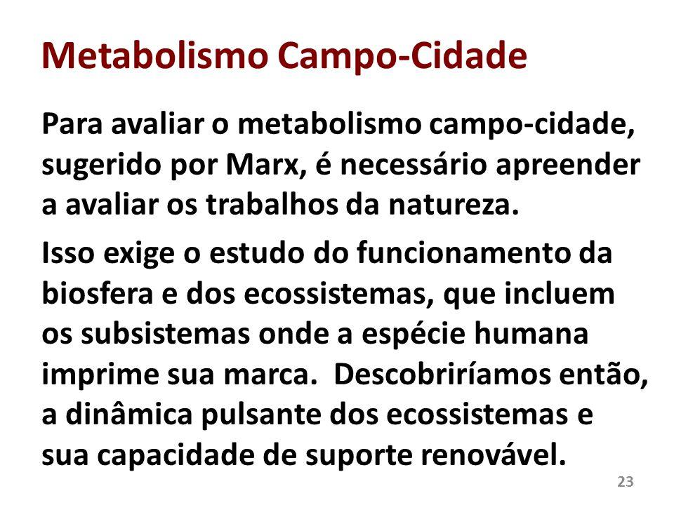 Metabolismo Campo-Cidade