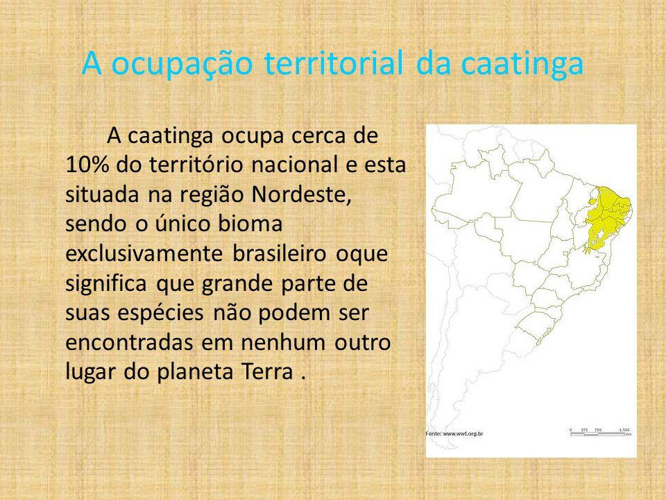 A ocupação territorial da caatinga