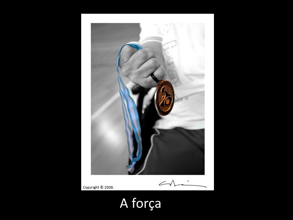 Copyright © 2009. A força