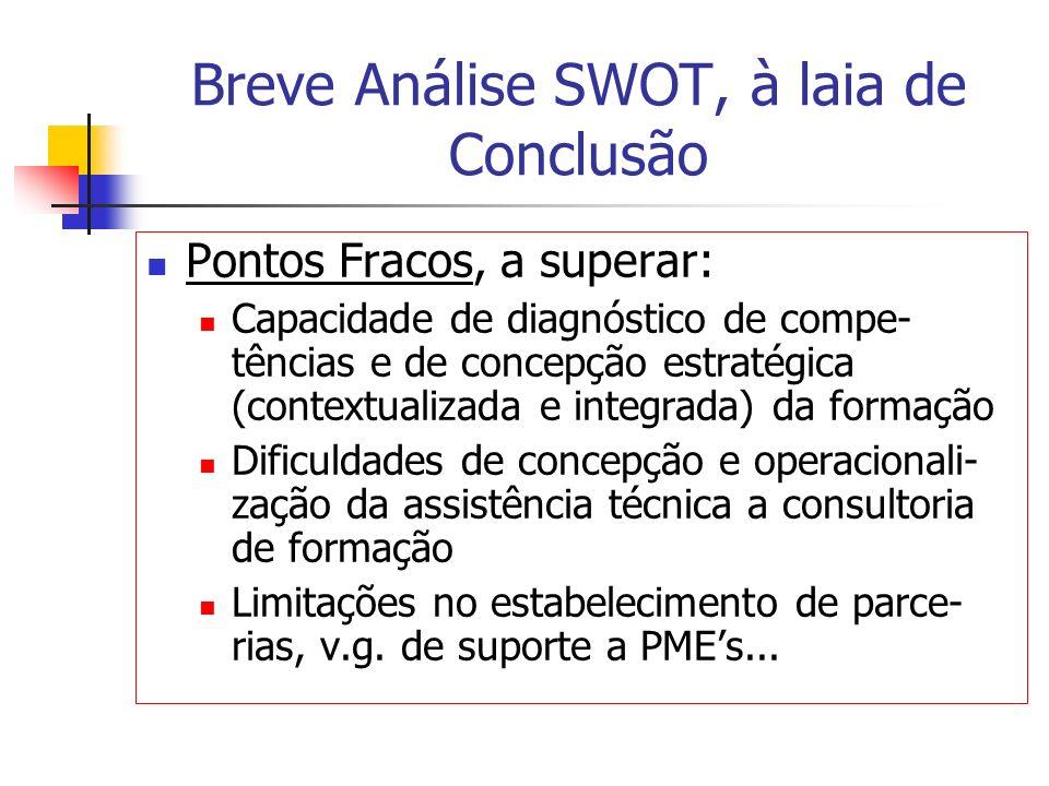Breve Análise SWOT, à laia de Conclusão