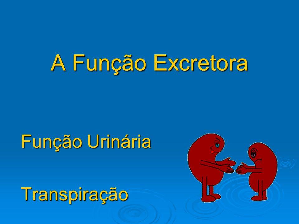 Função Urinária Transpiração
