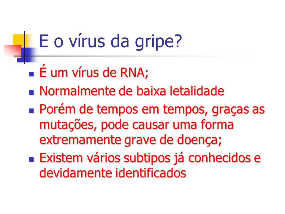 E o vírus da gripe É um vírus de RNA; Normalmente de baixa letalidade