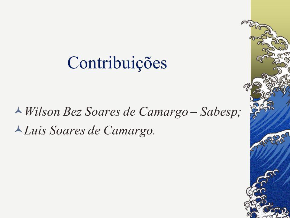 Contribuições Wilson Bez Soares de Camargo – Sabesp;