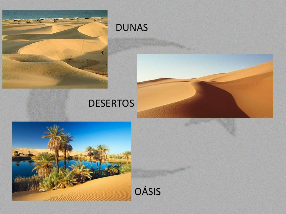 DUNAS DESERTOS OÁSIS