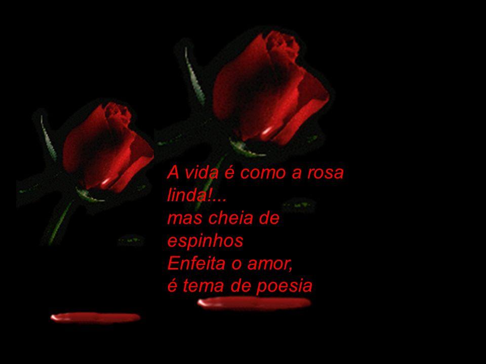 A vida é como a rosa linda