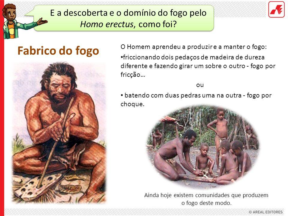 E a descoberta e o domínio do fogo pelo Homo erectus, como foi