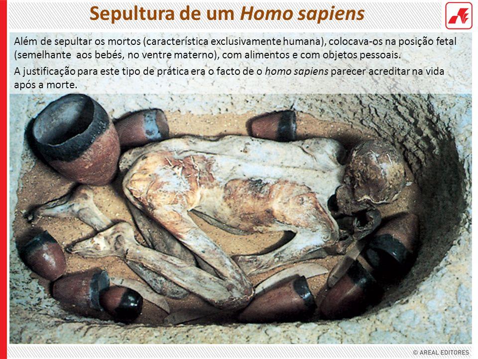 Sepultura de um Homo sapiens