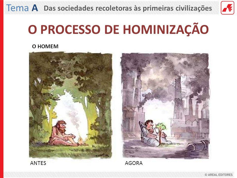 Das sociedades recoletoras às primeiras civilizações