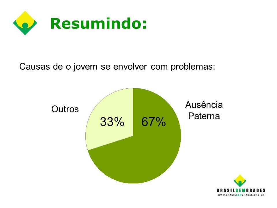 Resumindo: 33% 67% Causas de o jovem se envolver com problemas:
