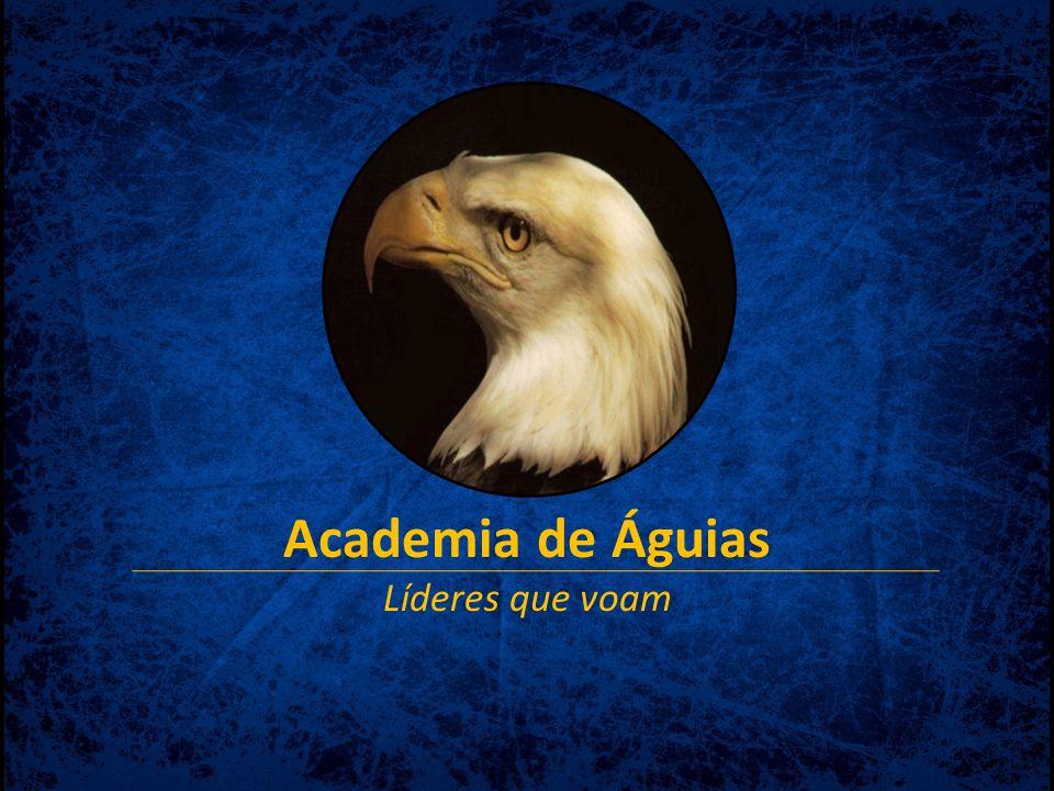 Academia de Águias Líderes que voam