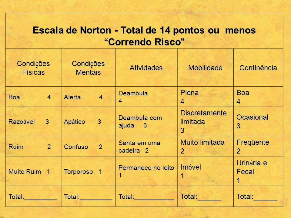 Escala de Norton - Total de 14 pontos ou menos Correndo Risco